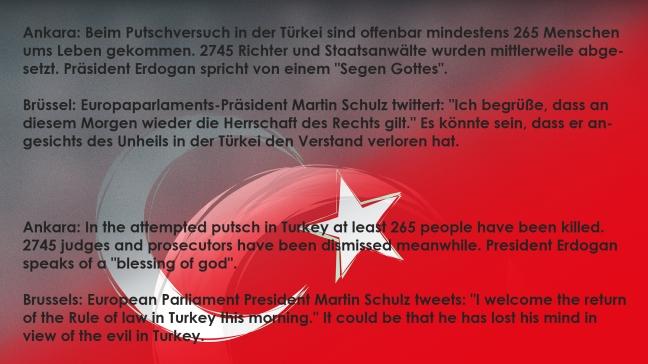 Flag_of_Turkey 04_02