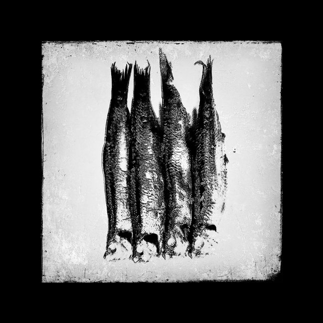 quartett-02_02