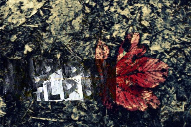 red_leaf-action-04_02